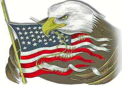 usa_eagle_sews_flag