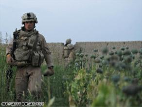 art.afghanistan.poppy.afp.gi